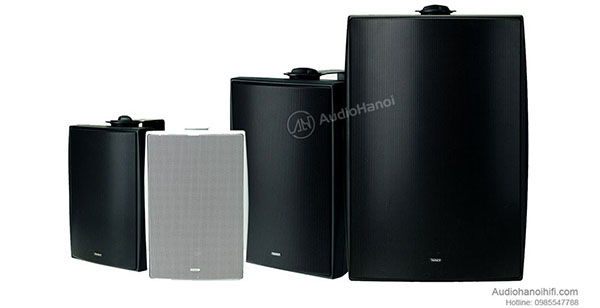 dong loa Tannoy DVS 2