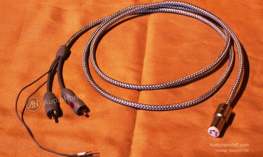 Đường truyền mạnh mẽ và tinh tế đến từ dây tín hiệu AudioQuest Wildcat