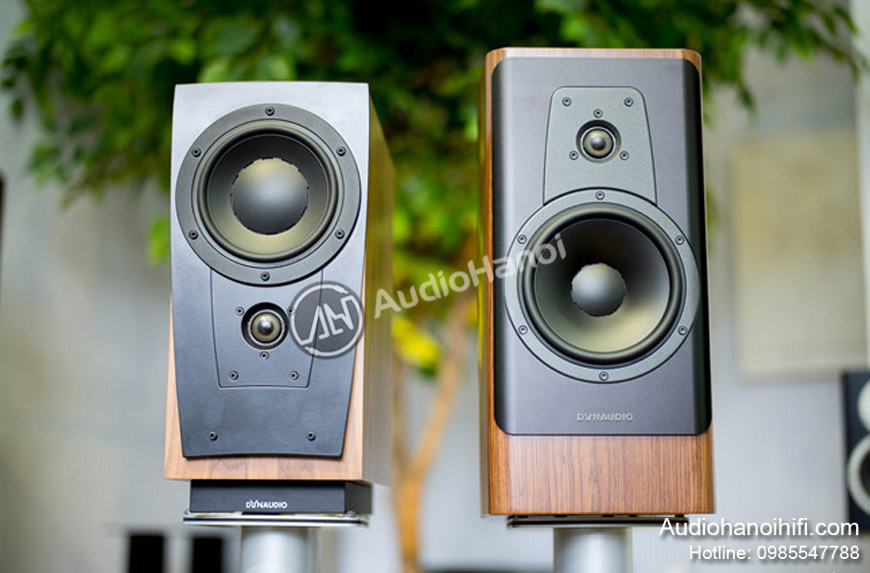 loa Dynaudio Contour 20 chat