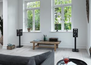 Loa Dali Rubicon 5: Thiết kế ấn tượng với chất âm thú vị